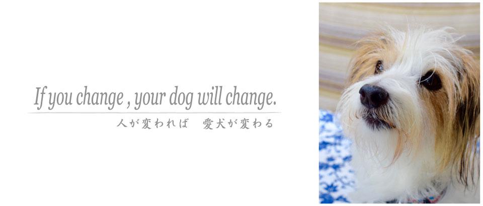 人と愛犬のヘルスケア/ Animal Reconnect System/ARS